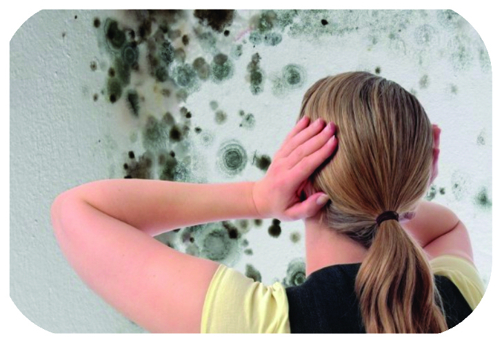 Mold Infestations are all too common in Florida.  Due to rain, flooding, strong storms and even humudity coming from insdie the home, mold can seem to appear practically anywhere and at any time.  The worst part is not the unsightly dark spots that accumulate over your walls and ceiling...it's the after effects to your personal health.  If you believe you have mold, there is aprofessional remediation process that can be very costly.  Call Citizens Claims Consultants so that we may guide you in the right direction for your claims as well as the necessary steps to ensure that you are rid of the mold.